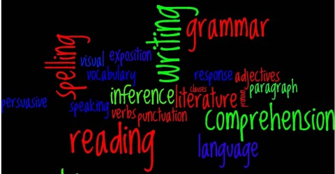 nsw literacy continuum word document