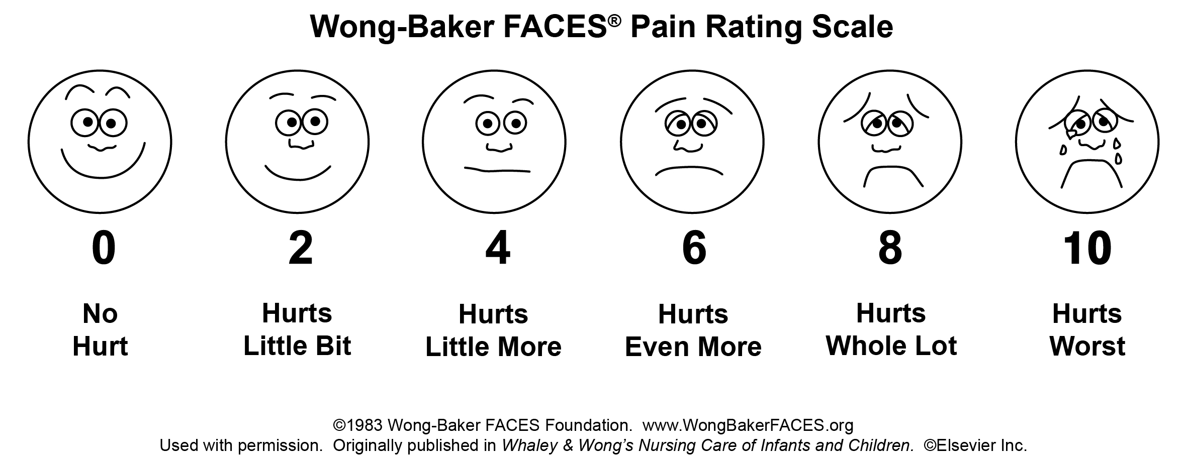 abbey pain scale word document