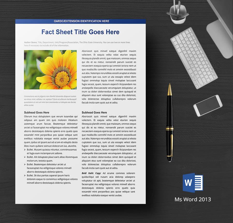 word document fact sheet template