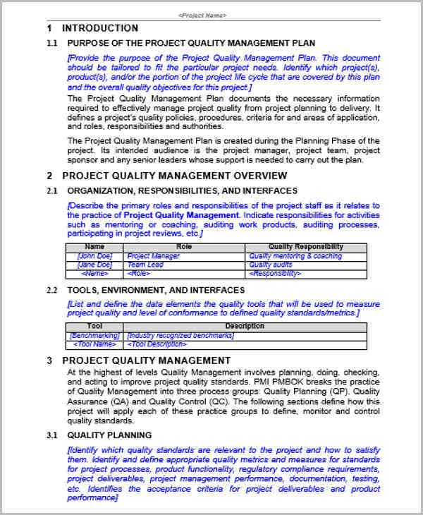 project management plan document example