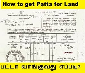 transfer of land document will then be registered