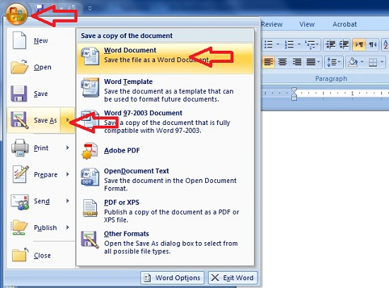 how to password a word document