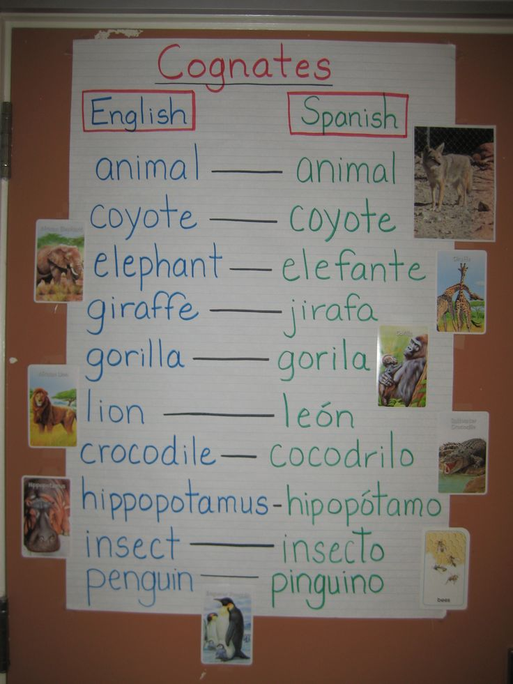 how to translate english to spanish in word document