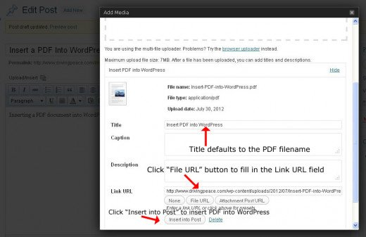 how to insert a pdf into word document