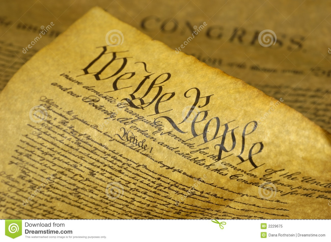 what is a company constitution document